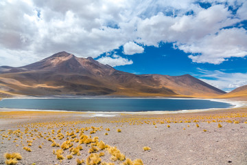 Atacama Altiplana desert, Laguna Miscanti salt lake and mountains landscape, Miniques, Chile, South America