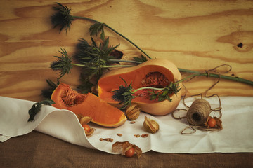 Still life with butternut pumpkin and thistle