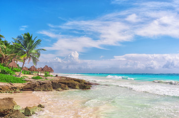 Tropical Sandy Beach on Caribbean Sea. Mexico.