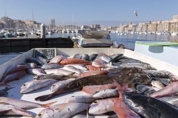 Marché aux poissons du Vieux Port de Marseille