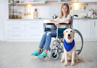 Cute service dog sitting on floor near girl in wheelchair indoors
