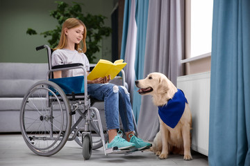 Girl in wheelchair reading book with service dog by her side indoors