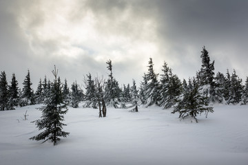 Winter landscape in Karkonosze mountain, Sudety, Poland