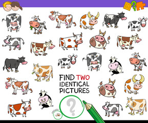 find two identical cows educational activity