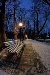Bench In The Dark Park
