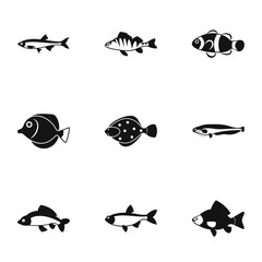 Species of fish icons set, simple style