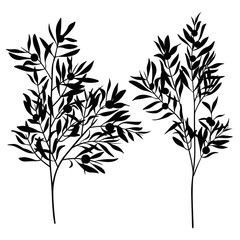 branches leaves olive silhouette set