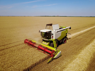 Large professional combine harvester working in the wheat field.