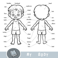 Visual dictionary for children about the human body. My body parts for a boy.