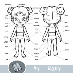 Visual dictionary for children about the human body. My body parts for a girl.
