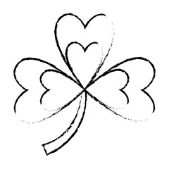 clover three leaves luck symbol vector illustration sketch image design