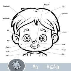 Visual dictionary for children about the human body. My head parts for a boy.