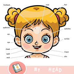 Visual dictionary for children about the human body. My head parts for a girl.