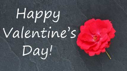 Happy Valentine's Day and red rose on a blackboard