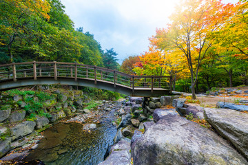 Biseulsan National Park The best of landscape Mountain autumn in South Korea.