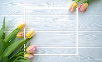 Lovely tulip flowers on white wooden background with frame, holiday postcard for Women's Day or Mother's Day or Sale concept. Floral spring background with copy space. Flat lay.