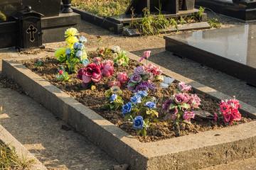 Belgrade cemetery 'Lesce' in Serbia