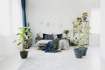 Ficus in floral bedroom interior