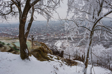Winter landscape in Pyatigorsk city at january