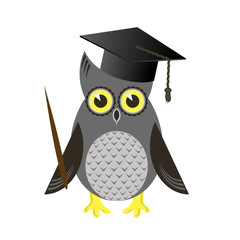 Cute Owl Bird with Graduation Cap