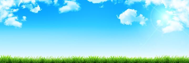 空 草 エコ 背景