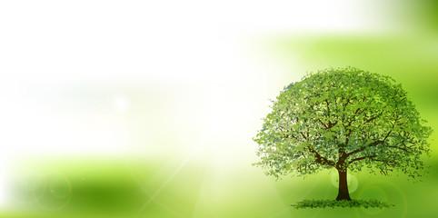 新緑 葉 エコ 背景