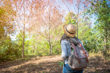 woman backpack in the forest with nature beautiful background