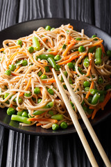 Warm salad of soba with vegetables and sesame close-up on a plate. vertical