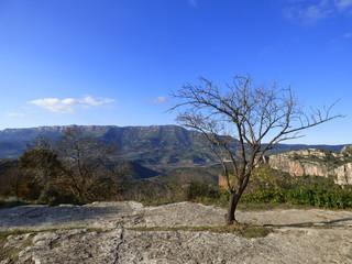 Siurana o Ciurana (Tarragona) es una localidad española de Cataluña  del municipio de Cornudella, en la la Sierra de la Gritella, en la comarca del Priorato.