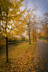 Herbst an Uckerpromenade