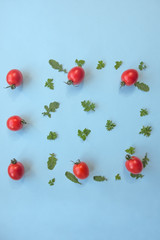 Leaf of parsley, rucola, and cherry tomatoes on blue pastel background