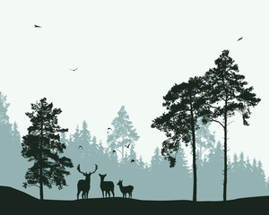 forest with deer and flying birds