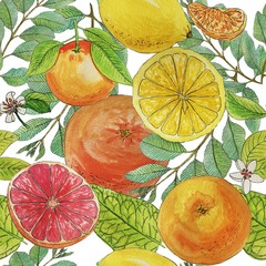Watercolor summer citrus seamless pattern isolated on white background