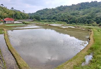 Farmlands in the village Fulong (Taiwan)