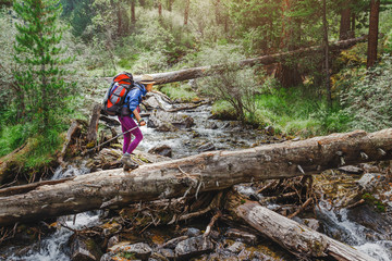 Woman hiker crossing the river in mountains using a big tree trunk, outdoor adventure concept