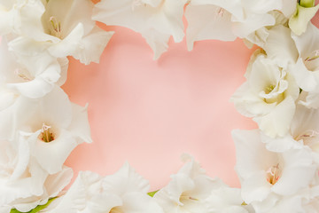Border frame made of white gladioluses on pink background. Pattern of gladioli with space for your text, holiday greeting card. Valentine's. Flat lay, top view. Flowers texture. Frame of flowers.