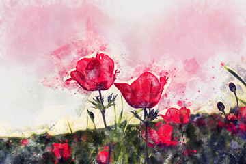 Fond de hotte en verre imprimé Inspiration painterly watercolor style and abstract image of red poppy in the green field.
