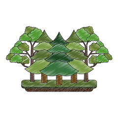 Tree pines forest icon vector illustration graphic design