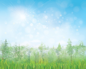 Vector summer landscape with blue sun shine  sky and  forest background.