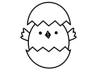 ヒヨコ(線画、殻上下)