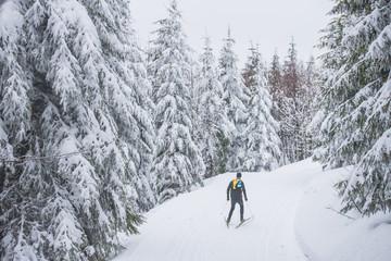 Nordic ski athlete in white nature, Sport photo, edit space