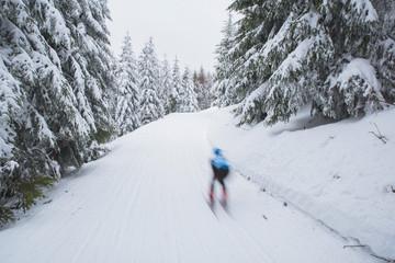 Cross country skiing in white winter nature. Original sport photo, Pyeongchang, winter game