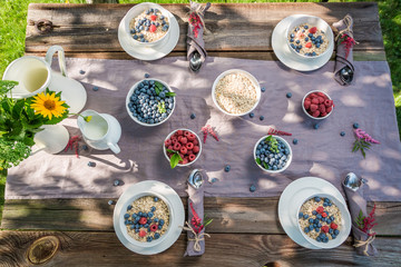 Tasty granola with raspberries and blueberries in summer