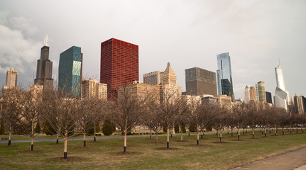 Downtown Chicago Illinois Skyline Stark Winter Park Trees
