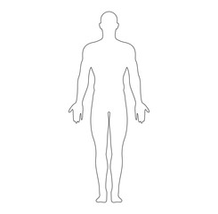Anatomical Position Anterior View Male Body Outline Vector Illustration