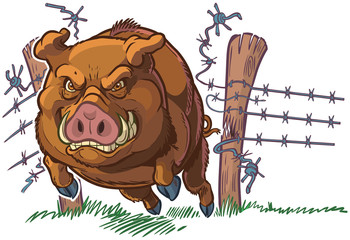 Pig or Wild Boar Crashing Through Fence Vector Cartoon