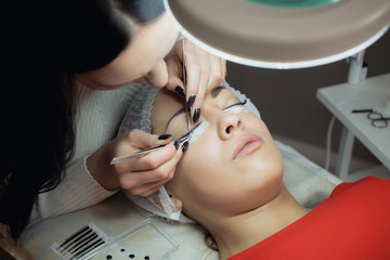 Eyelash Extension Procedure. Woman Eye with Long Eyelashes.