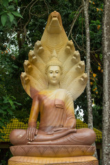 Buddha sitting on a serpent in Thailand.
