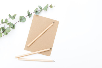 A notebook with a pencil and eucalyptus flower on a white background. Mininmalist style