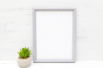 Gray frame and succulent flower on a white wooden background. Mininmalist